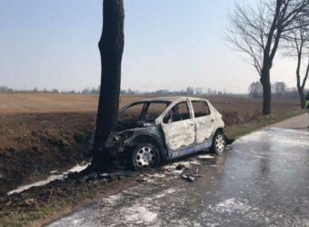 samochód uderzył w drzewo Krzyżewko