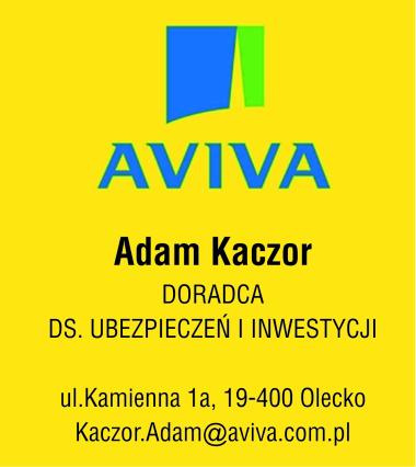 aviva2.jpg